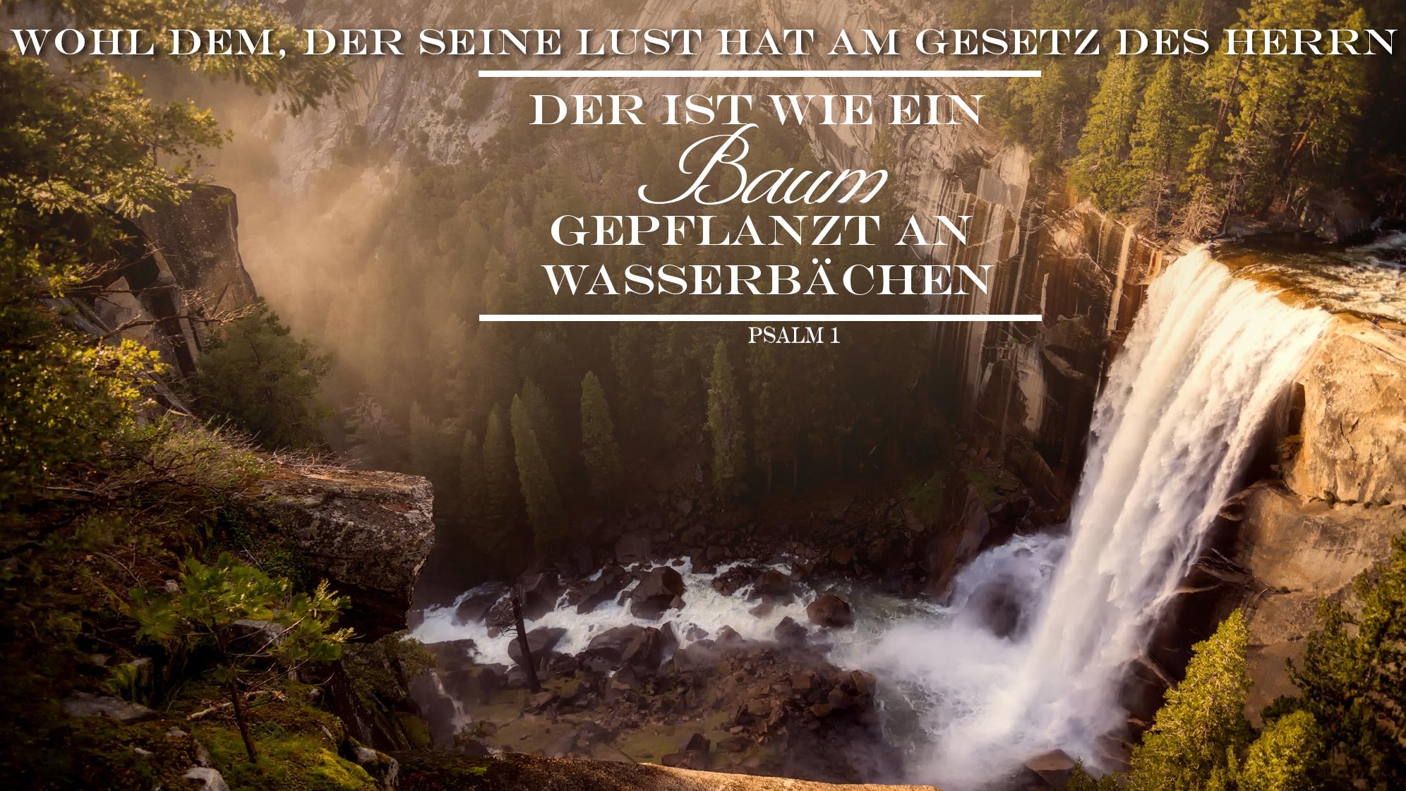 Christlicher wallpaper psalm 1 3 gladium spiritus - Christliche hintergrundbilder ...