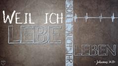 Joh. 14.19