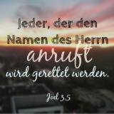 Joel 3,5.png