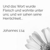Johannes 1,14.png