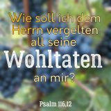Psalm 116,12.jpg